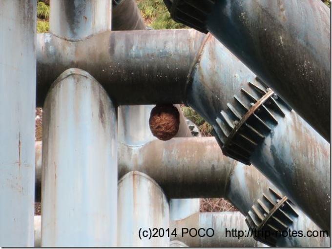 雪彦山砂防ダムの蜂の巣