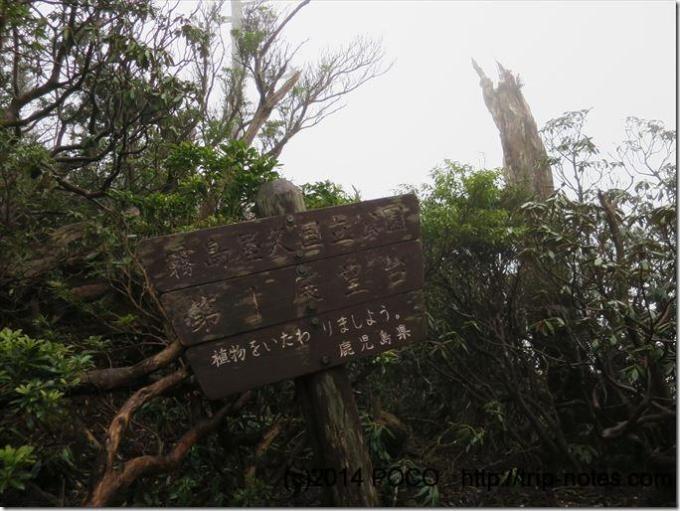 屋久島第一展望台