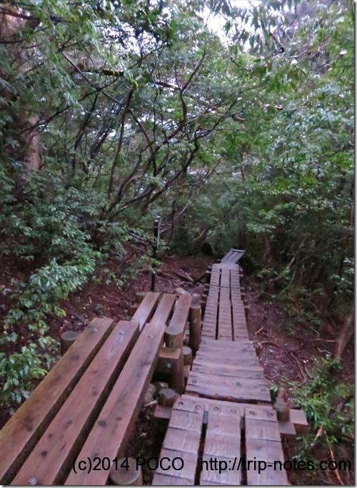 屋久島の木道
