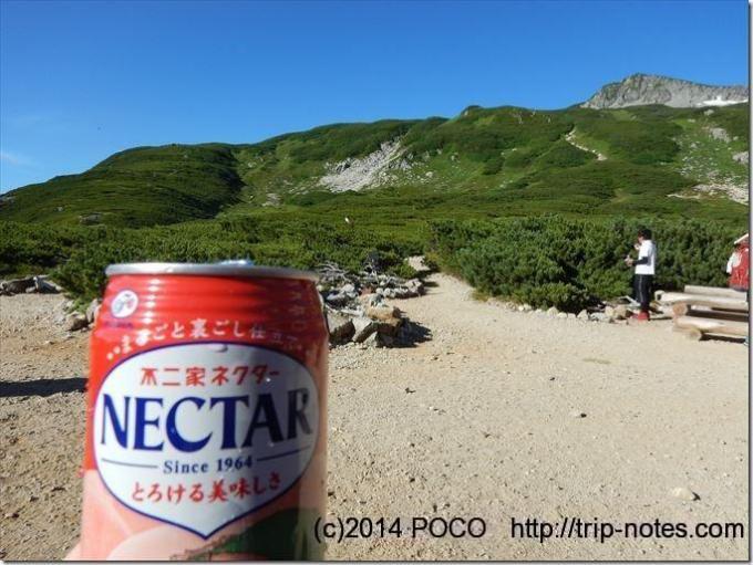三俣山荘でネクター