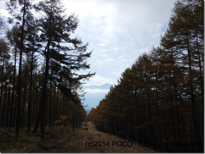 自然歩道ハイキングコース