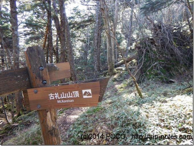 古礼山山頂と山頂を巻く巻き道の分岐点