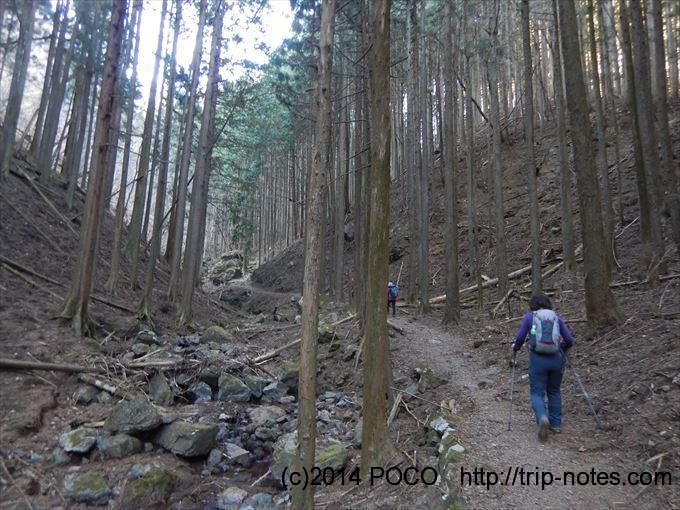 伊豆ヶ岳登山口