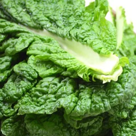 かつお菜のイメージ画像