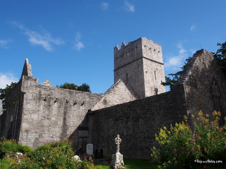 Muckross Abbey Killarney National Park