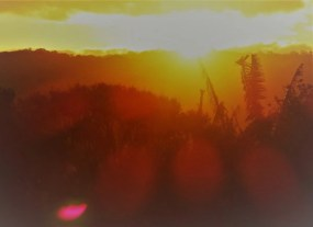 sunset sur l'Eurobodalla National Park