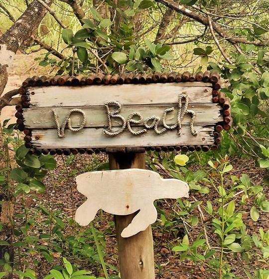 rocktail camp - wilderness safari - acces plage (4)