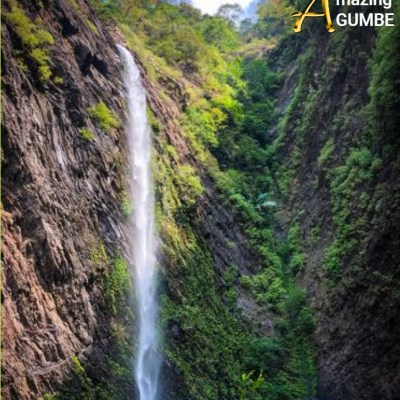 A is for Agumbe