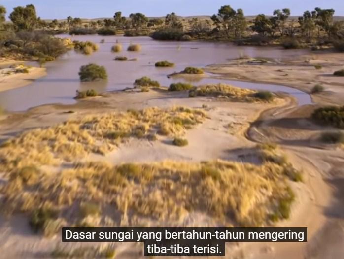 Mengapa semua makhluk hidup di bumi perlu air bersih