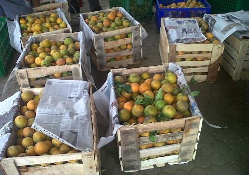 Pak Udin memiliki 6 peti jeruk. Setiap peti berisi 90 jeruk. Sedangkan Pak Burhan memiliki 4 peti jeruk. Jika banyak jeruk mereka sama banyak, berapa banyak jeruk Pak Burhan di setiap petinya?