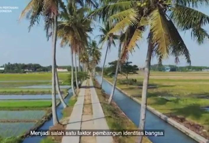 Mengapa kita perlu membangun sektor pertanian Indonesia menjadi lebih maju?