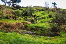 Hobbit Hole, Hobbiton Movie Set Tour, Matamata