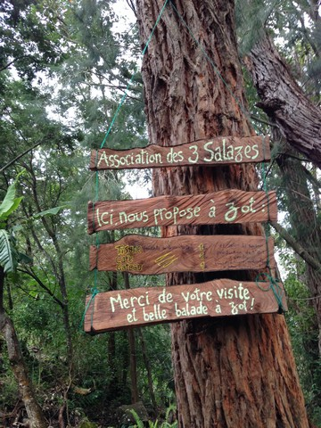 2015-08-09 - 02 - GR2 jusq Taibit - Marla à Cilaos - Mafate Trek Tour - La Réunion (85)