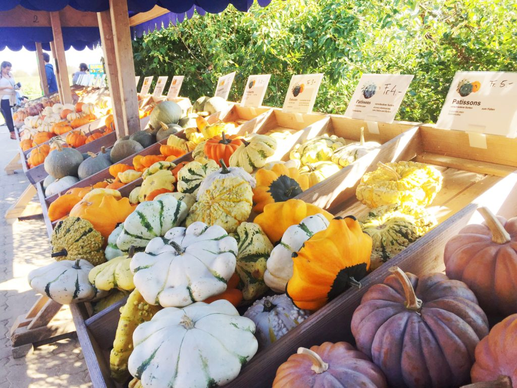 Pumpkin Festival Baselland
