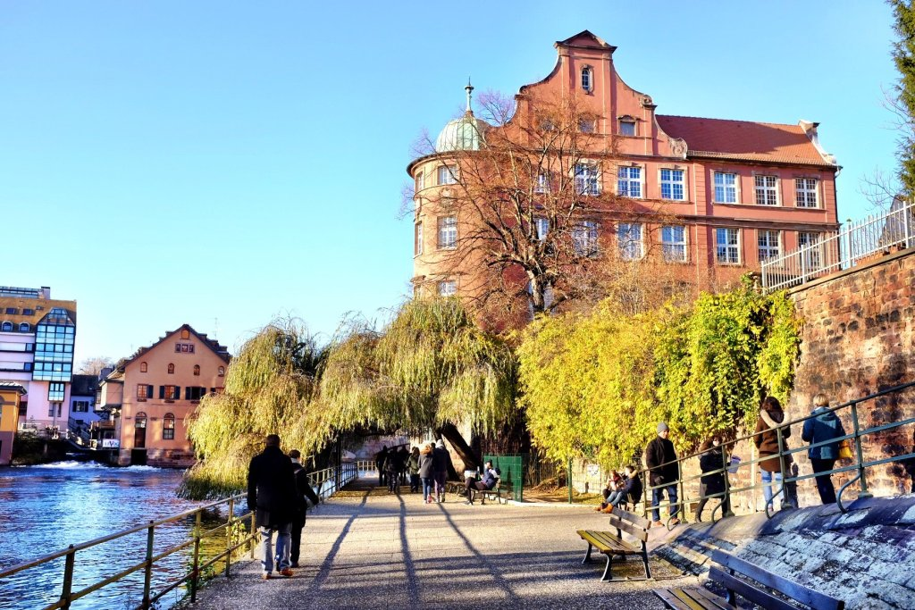 Old building with a weeping willow in the front as seen while we've been at the Christmas markets in Strasbourg