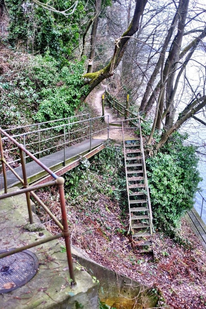 A stairway at the border of the Rhein