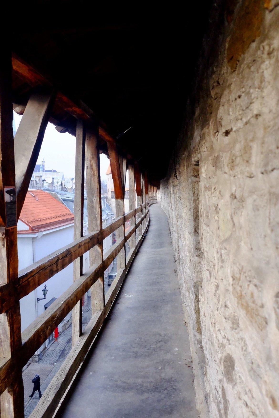 On the walls of Tallinn