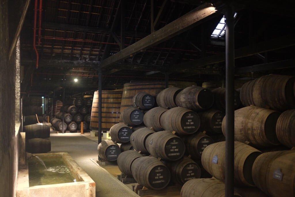 Foodie highlights of Porto port cellar