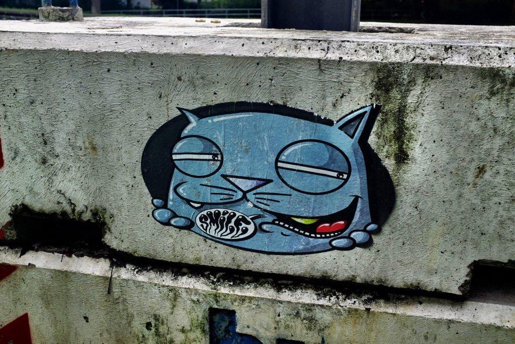 Street Art Köln Cat Cologne Gallery Trip Gourmets