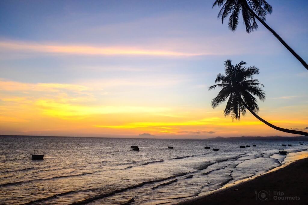 Things to do in Mui Ne Muine palms beach sand beach sea sunset