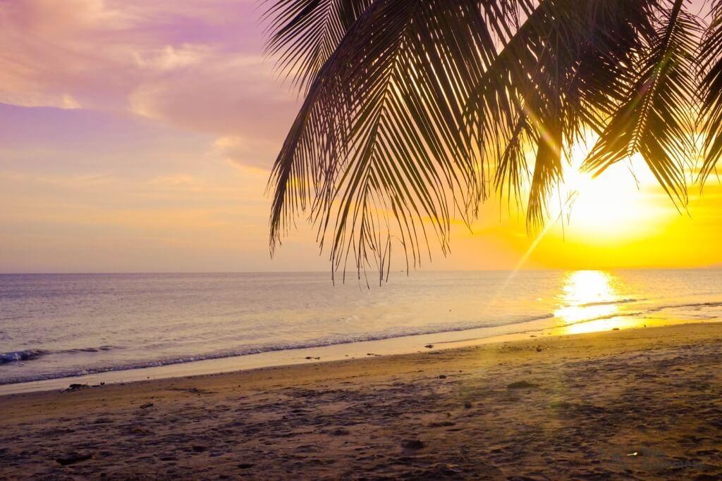 Things to do in Mui Ne Muine sunset beach palm sea