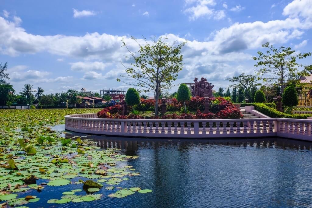 Things to do in Kampot cambodia Lotus Pond