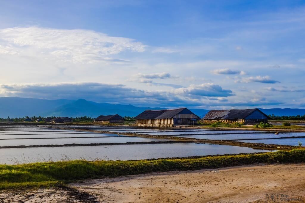 Things to do in Kampot cambodia Salt Fields