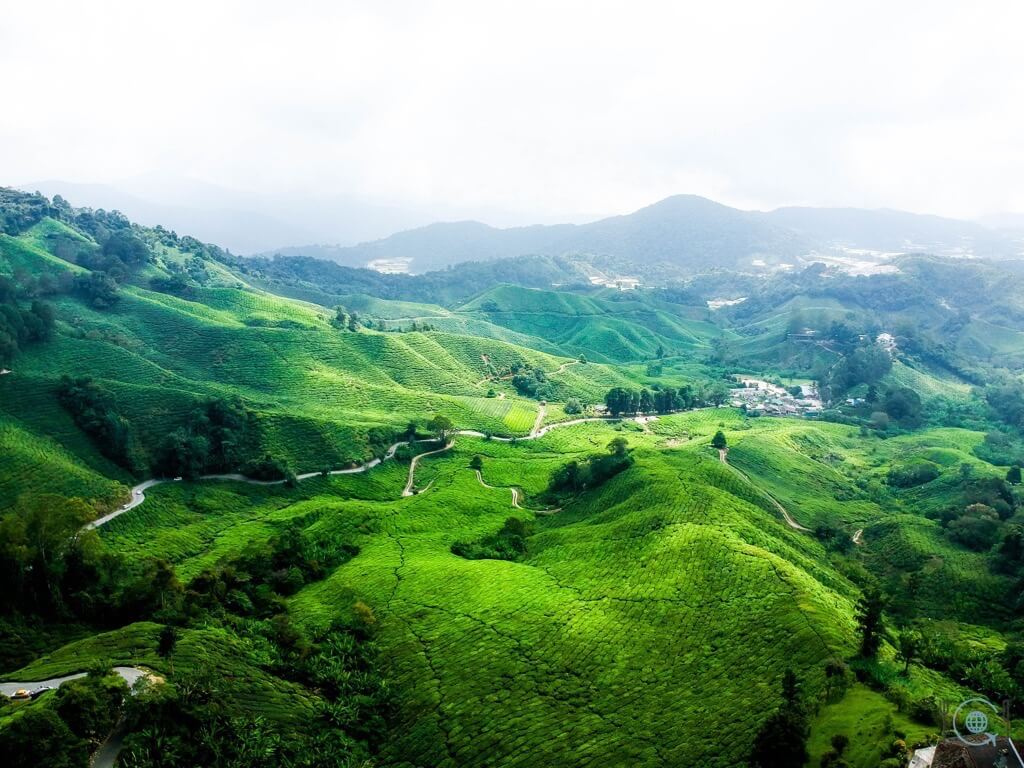 10 BEST TRAVEL DRONES – REACH NEW HEIGHTS WITH YOUR TRAVEL PHOTOGRAPHY tea fields ipoh malaysia