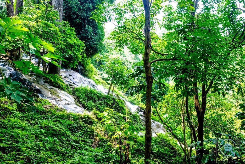 Chiang Mai Itinerary sticky waterfalls