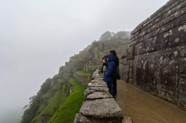 Vista de los andenes laterales de Machu Picchu