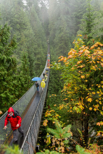 Puente Capilano Mountain