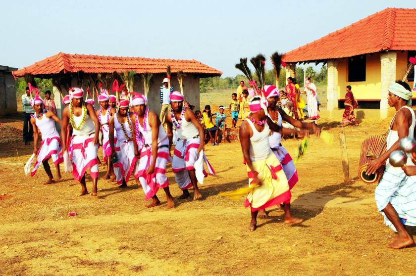 Tribal Dance Performance in  Amadubi-Panijiya Rural Tourism Centre
