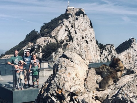 rock of gibraltar with monkeys