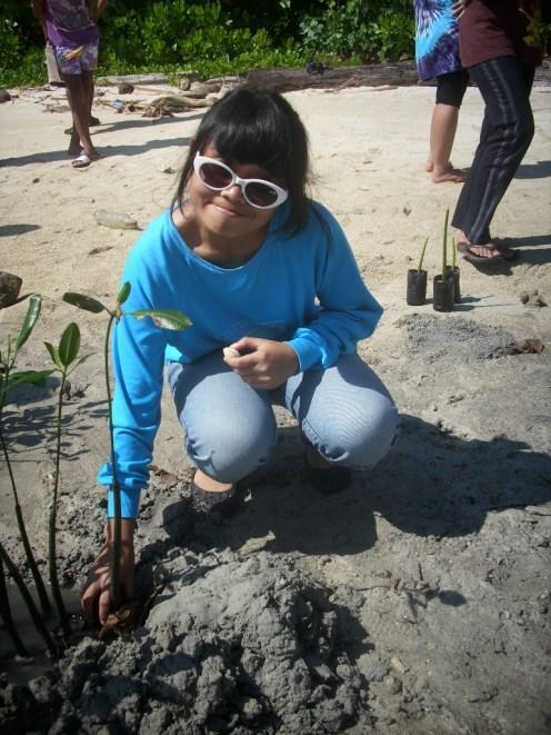 mangrove time14