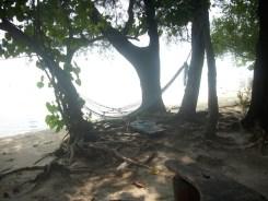 pulau pari1