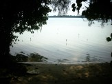 pulau pari2