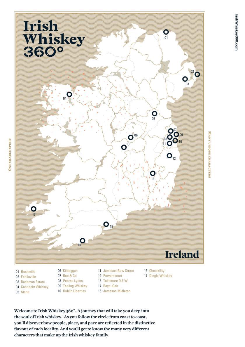 Reading the Irish Woman: Studies in Cultural - Oapen