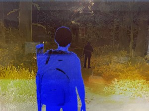 The last of us part 2 Screen Shot with low vision filter.
