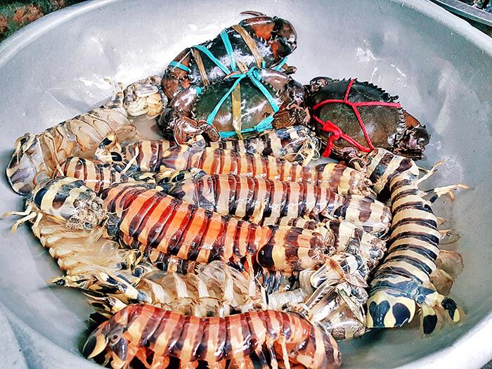 蝦蛄,螃蟹