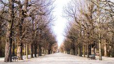 Austria_Wien_123
