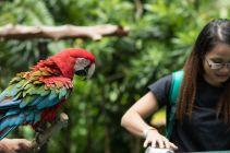 TripLovers_Malaysia_KL_096_KL-Bird-Park