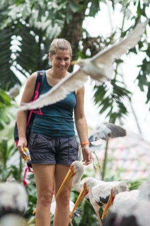 TripLovers_Malaysia_KL_160_KL-Bird-Park