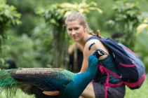 TripLovers_Malaysia_KL_164_KL-Bird-Park