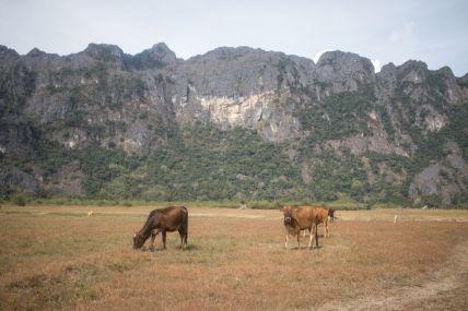 TripLovers_Laos_TheThakhekLoop_090