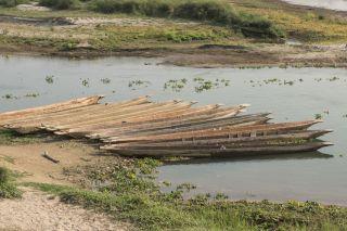 TripLovers_Chitwan_026