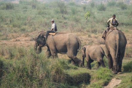 TripLovers_Chitwan_108a