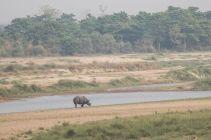 TripLovers_Chitwan_156