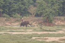 TripLovers_Chitwan_159