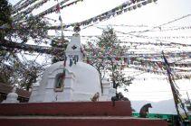 TripLovers_Kathmandu_275