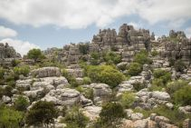 Andalusia2018_080_ElTorcal
